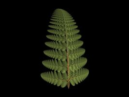 The Apophysis Fern by Gibson125