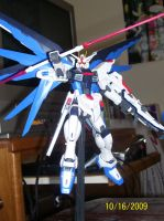 Freedom Gundam MG Ver. B by Renegade-V