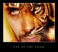 Eye of The Tiger by lithium999