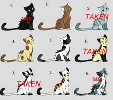 Cat Adoptables ((Very Cheap!)) by Aika-cat