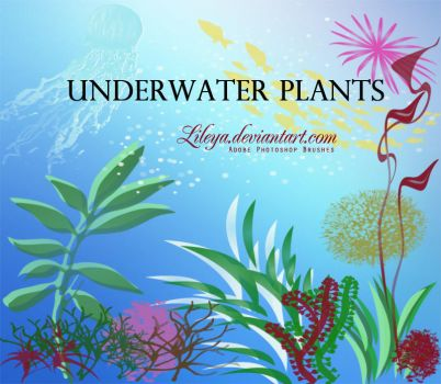 Underwater Plants by Lileya