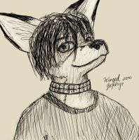 Foxy Sketchy by WingedZephyr