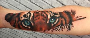 Tiger Feather coverup by CreativeCurseKina
