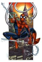 Spiderman by jocachi
