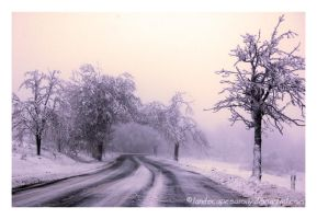winter dream No. 9 by landscapesaxony