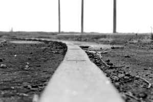 The rail at the Truganina Explosive Reserve by wolftraz