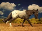 Loping Appaloosa model by ymagier