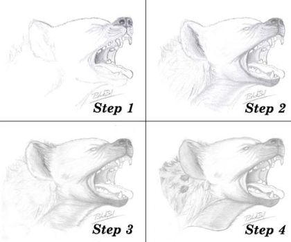 Hyena step by step by Thrareck