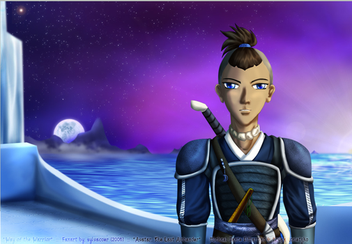 Way of the Warrior by Sokka-Fangirls