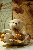 Day 193: Toy Bear in A Cage by coolwanglu