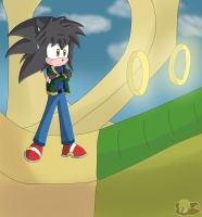 Commission: Jason Exploring Green Hill Zone by Flame-of-Icarus