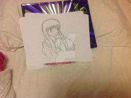 Challenge - NO PEN, NO ERASER, AND NO SKETCHING.. by Dhanica02