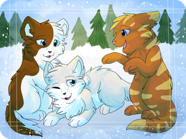 Ashpaw, Wolfpaw and Owlpaw by CascadingSerenity