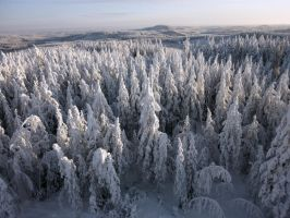 Winter in Finland by RLPhotographs