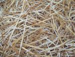 Texture Stock, Straw by Shadow-D-Keeper