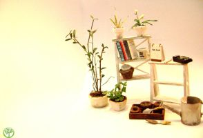 miniature: tree by lovely301090
