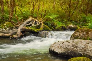 Fast river by Korolevatumana