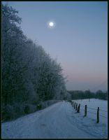 winter moon by Ingelore