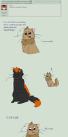 Q + A 133 (2p) by Ask-Catada