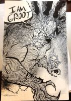 GrooT and Rocket by artist Tom Kelly by TomKellyART