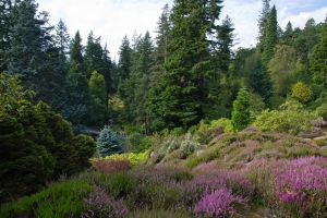 Cragside Garden by parallel-pam