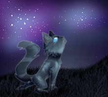 Constellations by CoughEBeanz