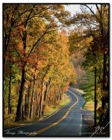 Clopper Road in the fall by Beeej21
