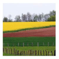 Rouges terres by amiejo