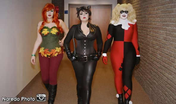 Ivy, Cat and Harley by rocknroler