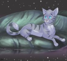 Jayfeather at the Moonpool by WindWo1f