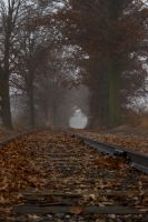 Misty rails 008 by mayhem62930