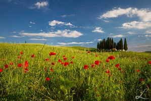Toscana I by BlueFish24