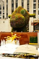 At the Rockefeller Center 1 by wildplaces