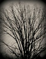 Gloomy Tree by Pandabell171