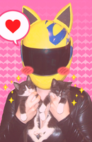 Celty meets some Kitties by xxx-TeddyBear-xxx