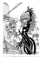 Spider-Man and Black Cat by Michael Turner by NemesisBeast