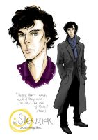 BBC Sherlock by TashinaJacob