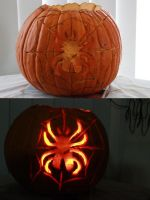 Spider pumpkin by Shantelee-Lace