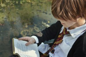 Studing on Hogwarts Lake by Sarcanide