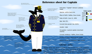 New fursona reference sheet for 2013 by Oceanlinerorca