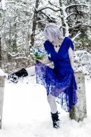 Ice Queen by Force4Photos