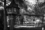 The tree house by TR4F1C