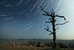 Startrail by gytis