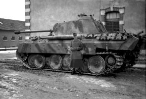 Panther 2 by F3nrirWolf