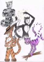 Favorite Cats by Phantom-Griffin