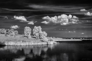 infrared summer 006 by arfist
