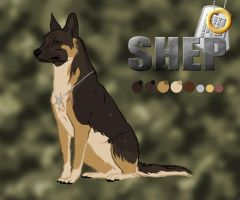 *RH* Shep Character Sheet...take 2 by CrazyRodeoGirl