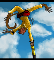 AT - The Monkey king by Jazzy90