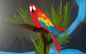 Parrot by ChubbaART