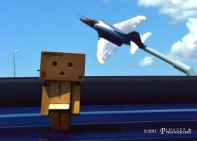 Danbo and a Blue Angel by bullethead321